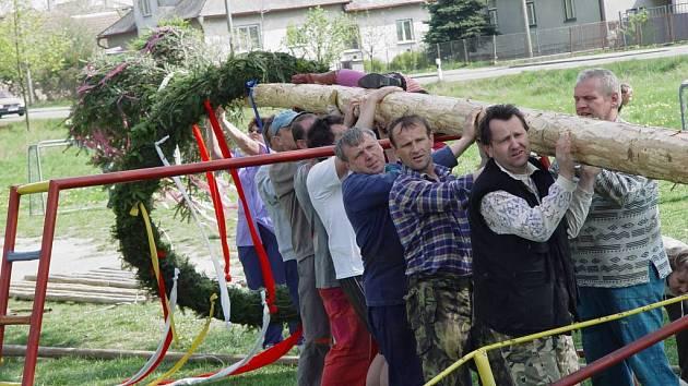 Podle tradice postavilo včera v Nových Domcích u Jihlavy u místního rybníku šestadvacet urostlých mužů máji.