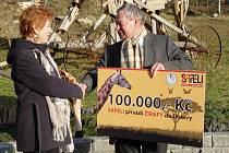Zástupce společnosti Sapeli předává ředitelce zoologické zahrady první šek a slavnostně tak zahajuje projekt, Sapeli přivádí žirafy do Jihlavy.