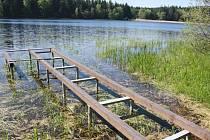 Břehy Černého rybníka letos obklopuje bujnější vegetace. Někteří rekreanti se bojí, že se zhorší čistota vody, která zde bývala v minulosti špičková.