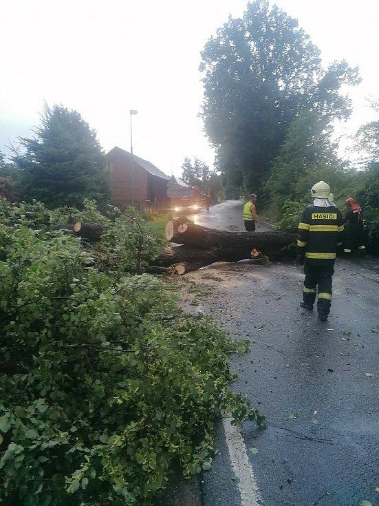 Spadlý strom v Baštínově.