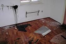 Rozlámaný nábytek, rozbité vybavení koupelny a toalety, ze zdí vytrhané elektrické radiátory, vytrhané lino, zničené spotřebiče a po bytě rozlitá tmavá barva. Přesně tak to vypadá v městském bytě v Jihlavě - Kosově.
