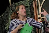 Pohádkové představení Zelené prasátko pro děti uvede v pátek od půl druhé jihlavské nezávislé divadelní studio De Facto Mimo v Divadle Na Kopečku.