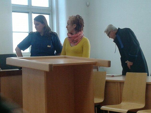 Čtyřiadvacetiletá Lucie Dušeková se už sama ve svých trestech dost dobře nevyzná. Nevěděla, jak dlouho má sedět ve vězení, protože spousta jejích dalších trestů je stále v projednávání. A ve středu dostala dalších sedm měsíců nepodmíněně za krádež.