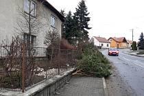 Strom překážal v neděli pozdě večer řidičům na silnici v Hodicích směrem na Třešť.