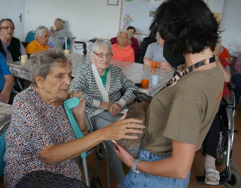 Klienti Integrovaného centra sociálních služeb se seznamovali s jídelníčkem zvířat díky jihlavské zoologické zahradě.