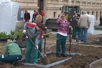 Prostor před jihlavským gymnáziem a průmyslovou školou promění do pátku v rámci soutěže čtyřicítka mladých zahradníků.