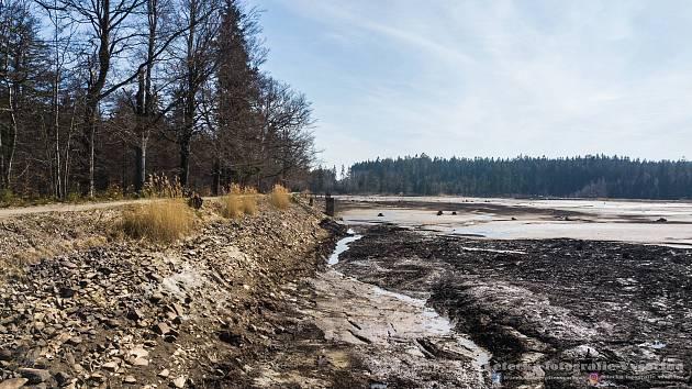 Vypuštěný Velký Pařezitý rybník na začátku dubna.