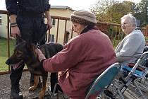 Čtyřnozí mazlíčci byli na návštěvě za seniory v domově v Lesnově.