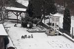 Sníh v Jihlavě.