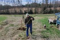 Myslivci v Dobroníně ani za pandemie nezahálí. Sází stromky, uklízí přírodu, starají se o zvěř.