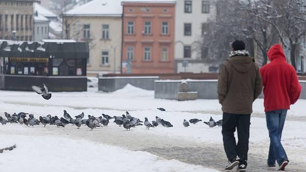 O půl stupně pod mínus dvacet klesla teplota o uplynulém víkendu teplota na Vysočině. Ilustrační foto.