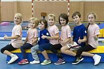 Sportovní děti. Hodina Dětí na startu tady probíhá každý čtvrtek od 15.30 do 16.30 hodin v tělocvičně Základní školy Luka nad Jihlavou.