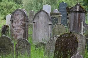 Židovský hřbitov v Polné na Jihlavsku.