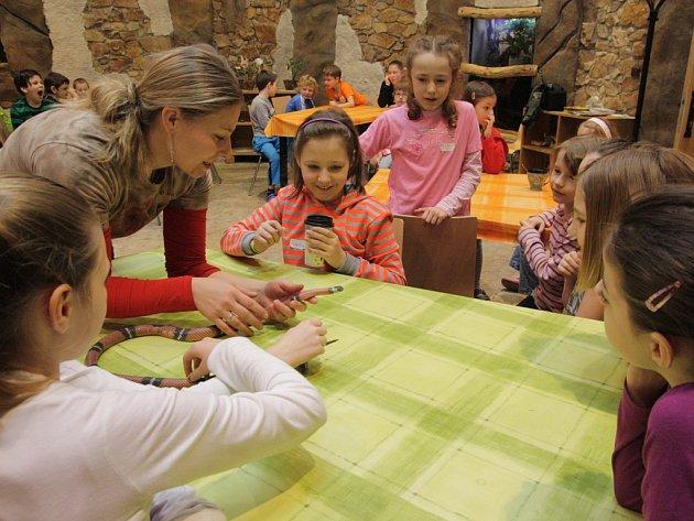 Pracovnice zoo Radka Vaňková ukázala dětem exotickou korálovku pěkně zblízka. I tak vypadala Noc s Andersenem v zoo.