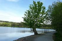 Ticho před bouří. Velký Pařezák, jak lidé s oblibou říkají, už jen čeká na lepší počasí. Potom bude v obležení.