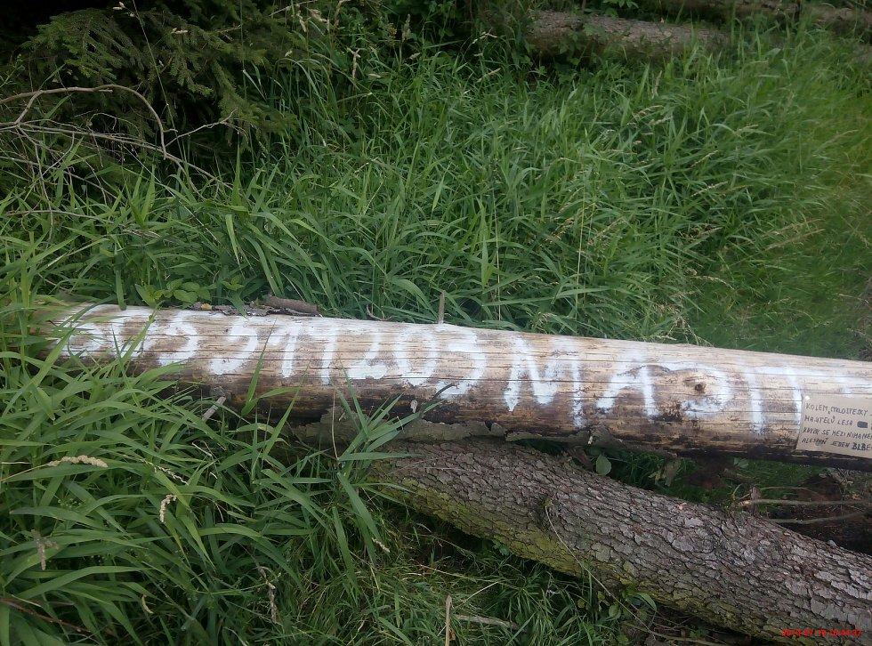 Stromy přes cestu nesou údaje o majiteli lesa. Foto: Deník/Martin Singr