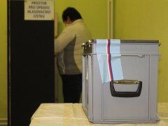Volby v Borovné u Telče.