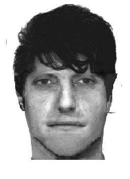 Pravděpodobný portrét pachatele