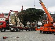 Instalace vánočního stromu na Masarykově náměstí v Jihlavě.