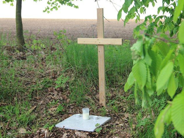 Mrtvolu novorozeněte našel u rybníka Drátovce náhodný chodec 12. dubna. Na místě se později objevil improvizovaný pomník.