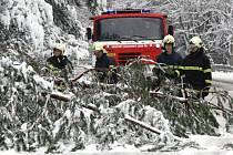 Na mnoha místech Vysočiny odklízeli jednotky hasičů pod tíhou mokrého sněhu spadané stromy.