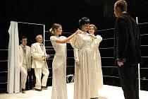 Ubohý vrah. Přesně tak se jmenuje hra, kterou uvedlo jihlavské Horácké divadlo, jako svou nejnovější premiéru v prosinci. Diváci ji mohou zhlédnout na Malé scéně.