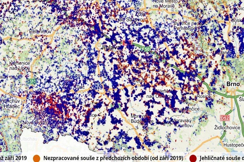 Kůrovcová mapa. Jak vypadá situace na Vysočině. Tmavě modrá značí těžbu jehličnatého dříví v období září 2019 až duben 2020.