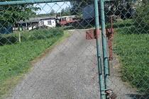 V Dolní Cerekvi je farma s norky. Nachází se v prostorách bývalé drůbežárny směrem na Cejli. Provozují ji sourozenci Petr a Jan Hanzalovi. Nyní řeší, co dál.