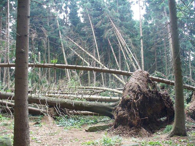 Stromy u Velkého Pařezitého rybníku, který je oblíbeným přírodním koupalištěm v jihlavském okrese, zdecimovala bouřka s větrnou smrští.
