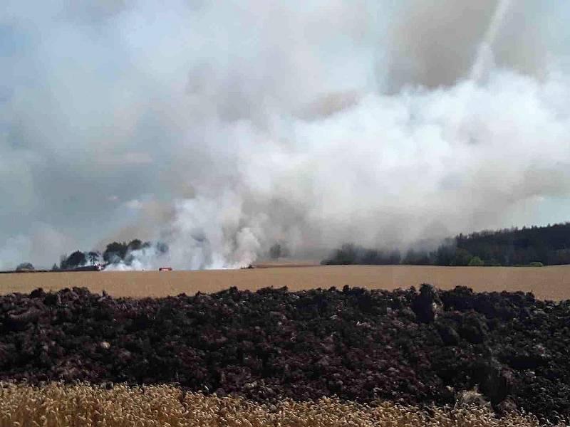 Požár u Třebíče kromě pole s obilím zasáhl i lesní porost.