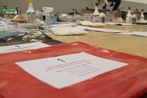 V tělocvičně za jihlavskou radnicí je nachystaných osmadadesát balíčků. Ty v pátek dopoledne zamíří do volebních komisí.