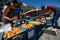 Prodej ovoce a zeleniny na Masarykově náměstí v Jihlavě.