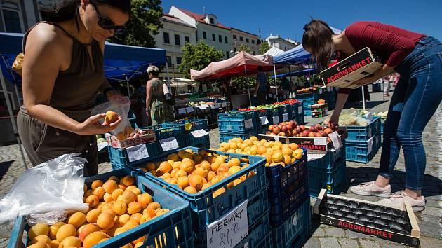Průzkum Deníku: ovoce a zelenina zdražily. Kilo jahod je za 180 korun