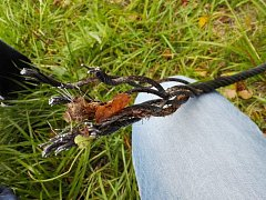 Přeříznuté lano mohlo někoho ošklivě zranit.