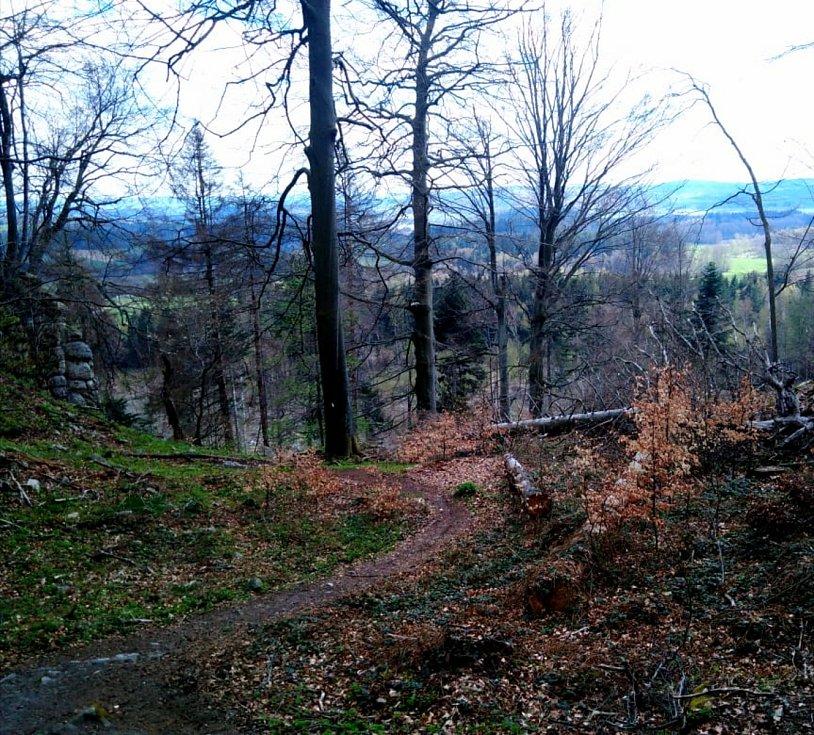 Krásný jarní výlet na zříceninu hradu Štamberk, kde v současné době kutají archeologové.