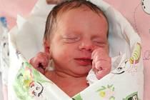 KRISTÝNA KUBIŠOVÁ poprvé vykoukla na svět 24. října 2016 v 11.22 hodin. Její míry byly 2580 gramů a 48 centimetrů. S rodiči Pavlou a Františkem a se sourozenci Gábinkou (4 roky) a Fanouškem (2,5 roku) jsou z Velkého Poříčí.