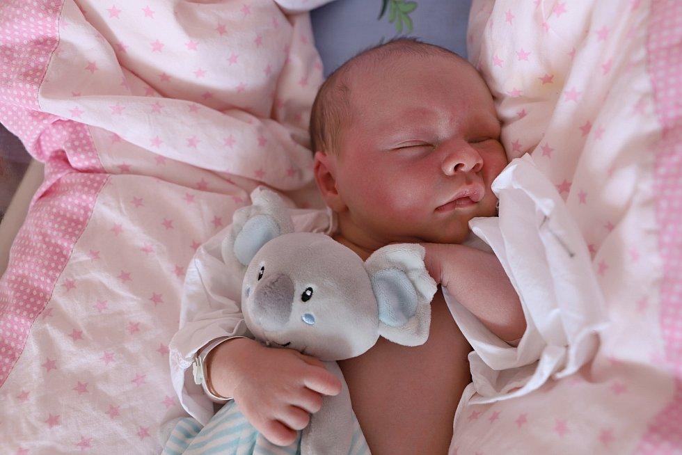 Dominik Púčik ze Solnice se narodil 7. září 2019 ve 20,04 hodin mamince Adéle a tatínkovi Lukášovi. Jeho míry byly 3620 gramů a 50 centimetrů. Doma se na brášku těšili sourozenci Elenka (6 let) a Daniel (8 let).