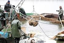 Špinka vydala své bohatství v podobě čtyř set metráků ryb.