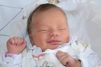 DANIELA VOLFOVÁ se narodila 10. prosince 2013 v 9:55 hodin s váhou 2940 gramů a délkou 49 centimetrů. S rodiči Bohuslavou a Martinem a s osmiletým bráškou Vojtíškem bydlí ve Vlčkovicích v Podkrkonoší.