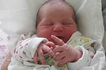MARIE HEJNOVÁ  přišla na svět 26. srpna 2010 ve 3:39 hodin s délkou 50 cm a váhou 3520 g. S rodiči Evou a Ondřejem, a se sourozenci Ondřejem (8), Josefínou (6), Eliškou (4) a Matyášem (2), bydlí v Červeném Kostelci.