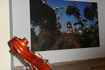 Z vernisáže výstavy fotografií Gity Skaličkové