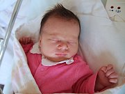 VIKTORIE NETÍKOVA z Nového Města nad Metují se narodila 18. dubna 2017 v 16.19 hodin. Holčička vážila 3130 g a měřila 48 cm.Z prvorozeného děťátka se radují rodiče Adéla Vítová a Filip Netík.