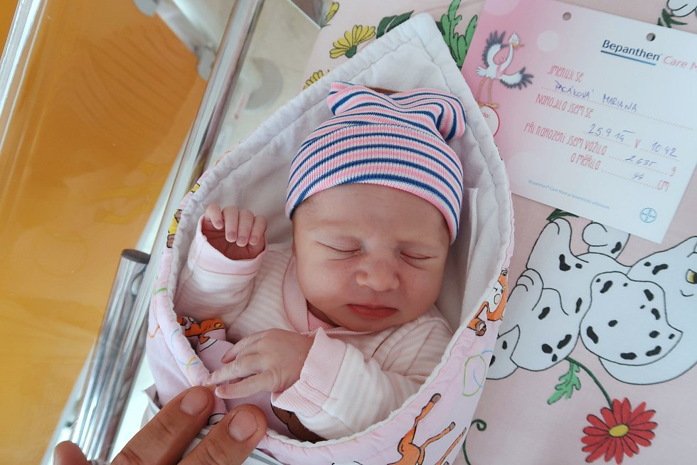 Mariana Pacáková z Červeného Kostelce přispěchala na svět 25. září 2019 v 10,42 hodin, vážila 2635 g a měřila 44 cm. Šťastní rodiče Ludmila a Petr Pacákovi mají doma ještě čtyřletou holčičku Violku.
