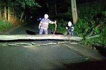 V Ratibořicích spadl přes cestu strom, další jsou vychýlené. Silnice je pro řidiče uzavřená.
