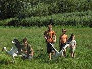 Ochránci přírody vypustili čápata do přírody.