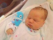 RICHARD JAKUB ARNOLD je na světě! Chlapeček se narodil 11. prosince 2017 ve 13,04 hodin. Jeho míry byly  4015 gramů a měřil 54 centimetrů. Novopečení rodiče se jmenují Linda a Richard Arnoldovi.