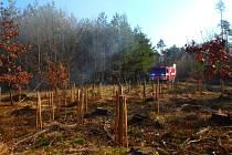 Hrabanku v mladém lese hasilo pět jednotek hasičů.