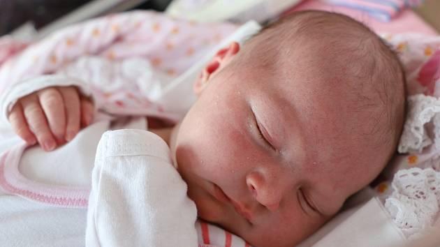 Anna Morávková z Velkého Dřevíče potěšila svým příchodem na svět maminku Petru Čejchanovou a tatínka Jiřího Morávka. Narodila se 29. dubna v 18.33 hodin, vážila 4460 gramů a měřila 55 cm. Těšily se na ni sestřičky Hanička (1,5 roku) a Lenka (21 let).
