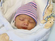 JOSEF SOCHOR je na světě! Chlapeček se narodil 16. ledna 2018 v 10.40 hodin rodičům Zdeňce Kucekové a Lukáši Sochorovi z Nového Hrádku. Jeho míry byly 3420 gramů a 48 centimetrů.