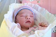 MARIE TULÁČKOVÁ z Velkého Poříčí se narodila 10. ledna 2018, vážila 3800 g a měřila 49 cm. Rodiče Dagmar a Michal mají ještě čtyřletého Honzíka a dvouletou Elišku.